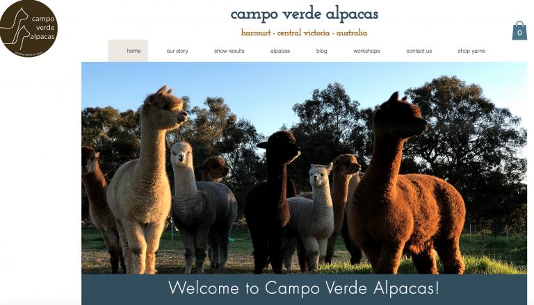 campo verde alpacas website